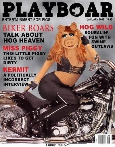 To promote a greater awareness for puppets and their lifestyles, Miss ...: https://misfit120.wordpress.com/2011/08/27/the-push-to-have-bert...