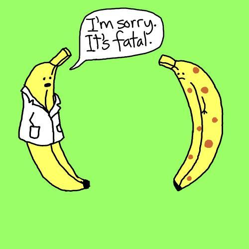 bananas_226445