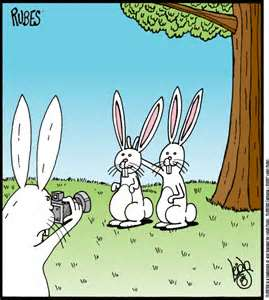 Typical bunny humor