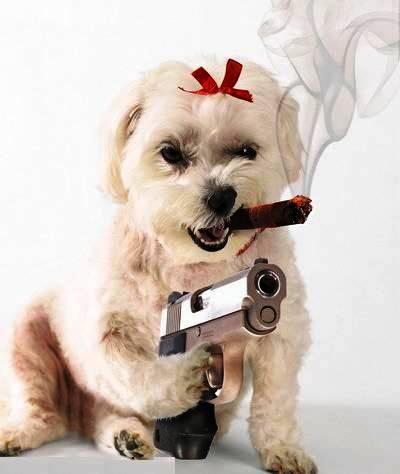 Otto (Mad Dog) Bonecrusher