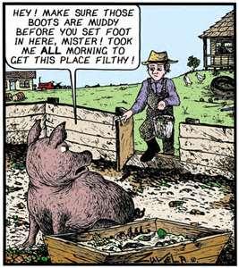 pig sty