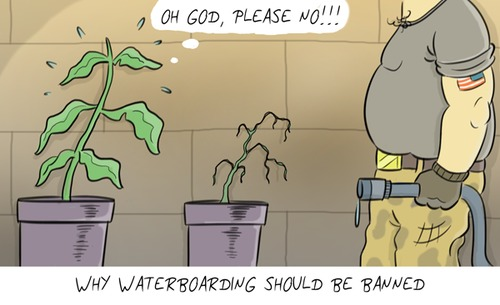 waterboarding_1712555
