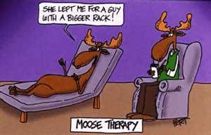 Moose trauma