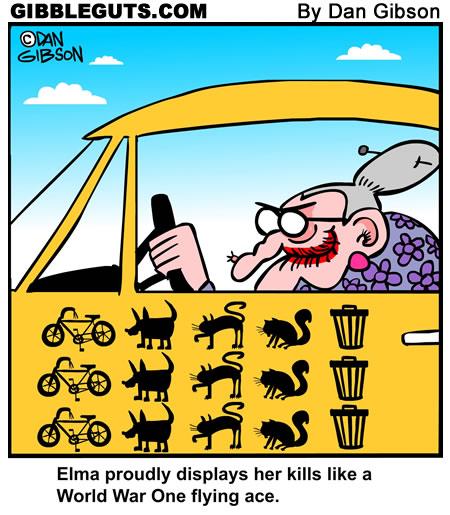 oldlady-driver-sm