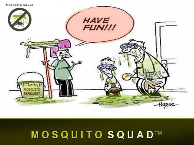mosquito5