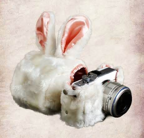 This could actually be Bunny Yeager's camera, or Hugh Hefner's.