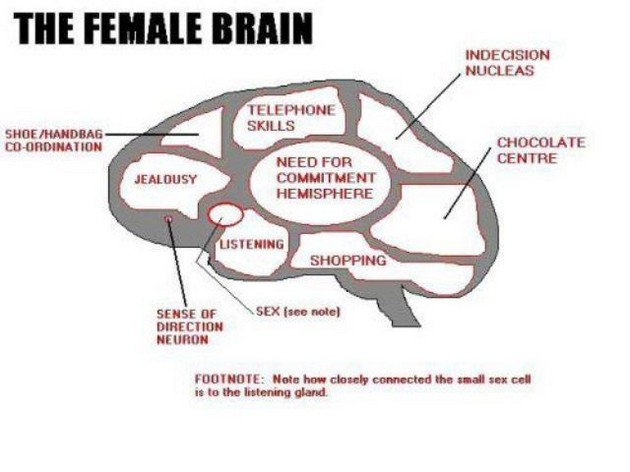 And its not like we already didn't know the sex part of a woman's brain  was the size of a rasin
