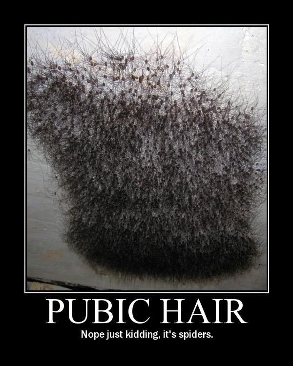 pubic4