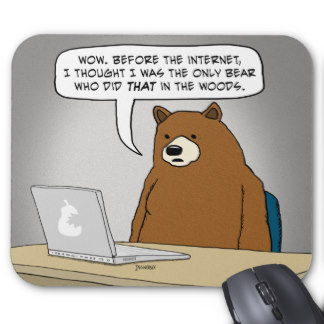 bear surfing the web