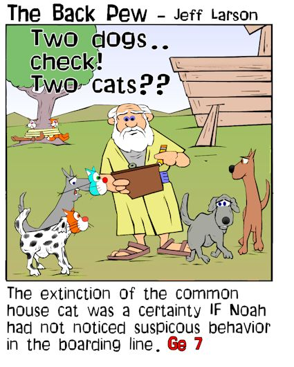 Little known Noah's Ark fact