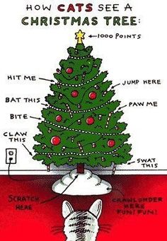 cats xmas tree